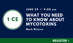 What You Need To Know About Mycotoxins